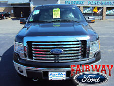 2009 thru 2014 F-150 OEM Genuine Ford Parts Chrome Billet Grille w/Emblem NEW