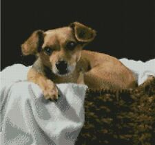 """Terrier Puppy Dog Counted Cross Stitch Kit 12"""" x 11.25"""" 30.5cm x 29cm"""