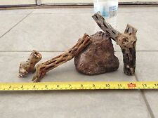 3 ODD PIECES ORGANIC CHOLLA WOOD *FISH*BIRDS*CRABS*CRAFTS*CLEANED&BOILED