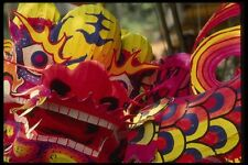 057042 Paper Mache Dragon For Dragon Dance Chinese New Year A4 Photo Print