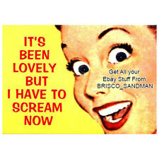 "Fridge Fun Refrigerator Magnet ""ITS BEEN LOVELY BUT I HAVE TO SCREAM NOW"" Funny!"