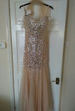 Ashley Roberts Precious prom/evening dress s12 BNWT