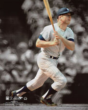 New York Yankees MICKEY MANTLE Glossy 8x10 Photo Baseball Print Poster
