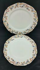"Pair 1876-1878 10"" plates, Haviland & Co, Limoges, France, floral Pattern, gilt"