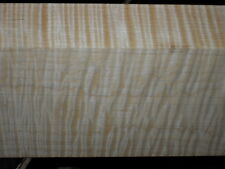 "7/4+ XXXEXTREME CURLY TIGER MAPLE    lumber   38"" x 5 7/8"" x 1 3/4+"""