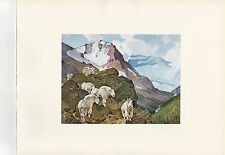 """1972 Vintage HUNTING """"MOUNTAIN GOATS, 1955"""" NORTHERN ROCKIES Color Lithograph"""
