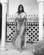 CAROLINE MUNRO 8X10 PHOTO SEXY FULL LENGTH SINBAD 1974