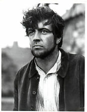 ENGLISH ACTOR ALAN BATES  10 x 8 BLACK & WHITE PHOTOGRAPH
