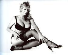 June Wilkinson Leggy Garter Belt 8x10 photo S6749