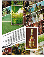 PUBLICITE ADVERTISING 024   1975   BISQUIT   cognac
