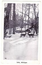 DEER IN SNOW----------LAKE MICHIGAN --------REAL PHOTO------------- POSTCARD