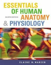 Essentials of Human Anatomy And Physiology by Elaine Nicpon Marieb