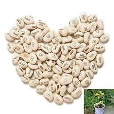 Magic Message Beans Seeds, Fun Novelty Gift, Grow Your Own Word 100pcs AE17