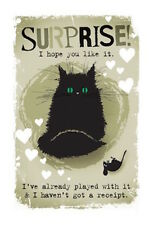 MAD OLD CAT LADY GREETING CARD: SURPRISE - NEW IN CELLO