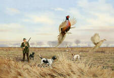 Pheasant Hunting Hunter Dogs  Owen Gromme