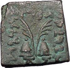 ANTIALKIDAS 145BC Baktrian Indo- Greek Ancient Coin of India Zeus Gemini i46909