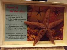 Legend of the Sea Stars- REAL STARFISH w Ocean Creature-Vintage Poem Postcard