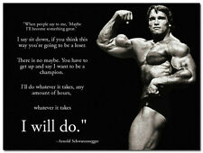 """I WILL DO WHATEVER IT TAKES Motivational Posters 24x32"""" Arnold Schwarzenegger"""