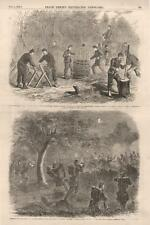 Making Fascines and Gabions -  Skirmish near Beaufort, S.C. -  Civil War - 1862