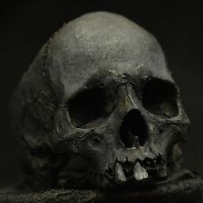 Into The Fire jewelry - Mid size decayed half jaw skull ring silver mens skull