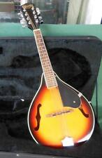 WOODS AOUSTIC GUITARS MANDOLIN SUNBURST 8-STRING + JOHNSON PADDED GIG CASE