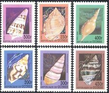 Guinea 1998 Sea Shells/Marine/Nature/Molluscs/Animals/Wildlife 6v set (b6330)