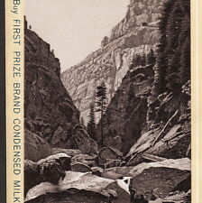 Cumbres & Toltec Scenic Railroad 1890's D.&R.G.R. Train photo-style Milk Ad Card