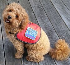 REFLECTIVE Authentic Service Dog Vest Comes With 2 Patches Large !