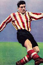 Football Photo TREVOR FORD Sunderland 1950s