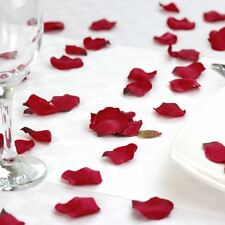 300 Red Silk Rose Petals Great For Valentines Wedding Anniversary Decorations