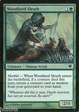 MTG - Innistrad - Woodland Sleuth - 2X - Foil - NM