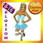 07018 Burlesque Blue Moulin Corset Tutu 8 10 12 14 16