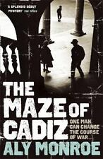 The Maze of Cadiz (Peter Cotton), Monroe, Aly, New Books