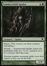 Somberwald Spider X4 EX/NM Innistrad MTG Magic Cards Green Common