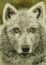 Original ACEO Painting Gray Wolf Art Wild Animal Card