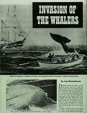 Invasion of The Whalers+Ships Alert,Almira,Gideon,Ploughboy,Sausalito