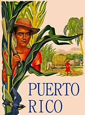 Puerto Rico Banana United States Music Caribbean Travel Advertisement Poster