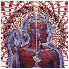 Tool # 10 - 8 x 10 Tee Shirt Iron On Transfer Lateralus