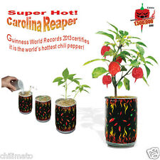 "Carolina Reaper Seeds ""All Included in Growing kit"" Grow Carolina Reaper Pepper"