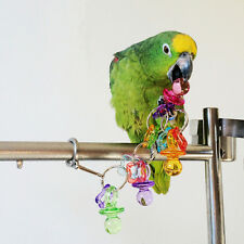 Colorful Acrylic Pet Bird Parrot Bites Peck Cage Cockatiel Budgie Play Toys