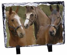 Horse Montage Photo Slate Christmas Gift Ornament, AH-9SL