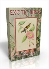Exotic Birds - over 530 public domain images on DVD