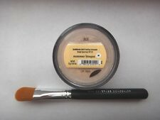 Bare Escentuals bareMinerals concealer Summer Bisque + Bonus concealer brush