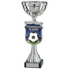 Football -Managers Player Titan Cup,Trophy,Award,250mm,FREE Engraving (TQ15109C)