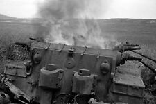 WWII B&W Photo Destroyed German Tiger I Tank Tunisia Afrika Korps  WW2 /4103