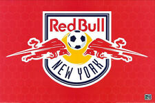 "NEW YORK RED BULL CREST SOCCER Poster 2010 BRAND NEW 24""X36"""