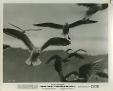 PHOTO CINEMA : JONATHAN LIVINGSTON SEAGULL 1973 Hal BARTLETT