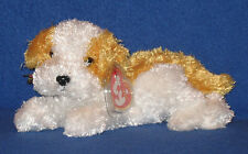 TY DARLING the DOG BEANIE BABY - MINT with MINT TAG