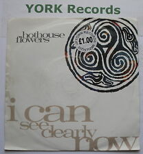 "HOTHOUSE FLOWERS - I Can See Clearly Now - Ex Con 7"" Single London LON 269"