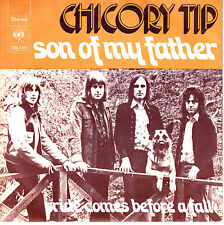 """7"""" 45 TOURS HOLLANDE CHICORY TIP """"Son Of My Father +1"""" 1972"""